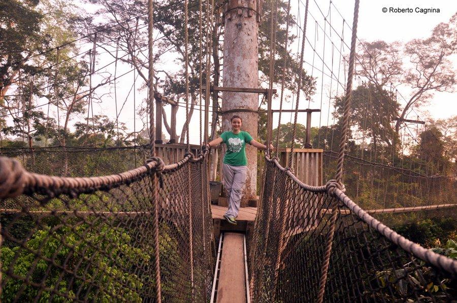 Cosa vedere in Ghana Togo e Benin dormire sull'albero alba foresta equatoriale canoping