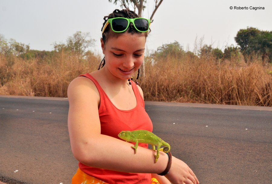 Cosa vedere in Ghana Togo e Benin safari parchi animali camaleonte