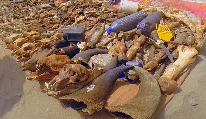 Festival Vodoo Internazionale di Ouidah in Benin mercati e feticci