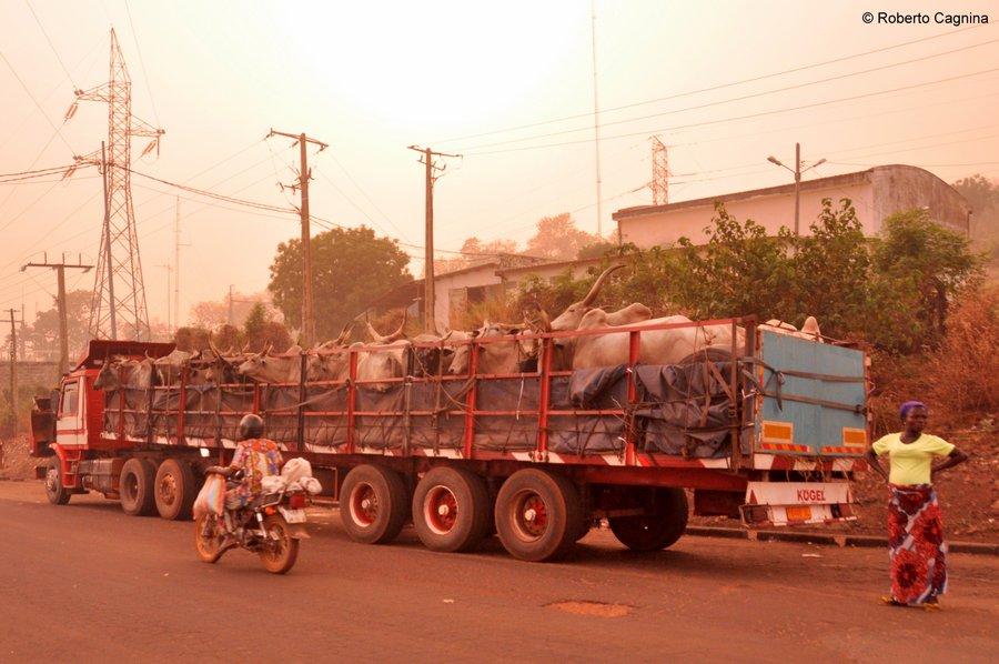 Organizzare il viaggio in Ghana Togo e Benin trasporti e spostamenti