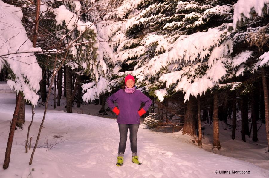 Canada on the road in inverno spazi infiniti
