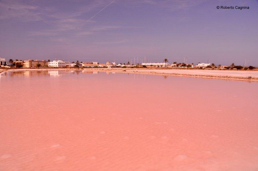 Consigli utili per organizzare un viaggio a Ibiza saline rosa