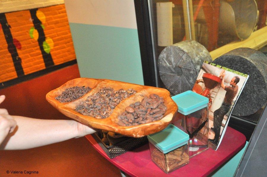 Visitare una fabbrica di cioccolato a Boston Taza