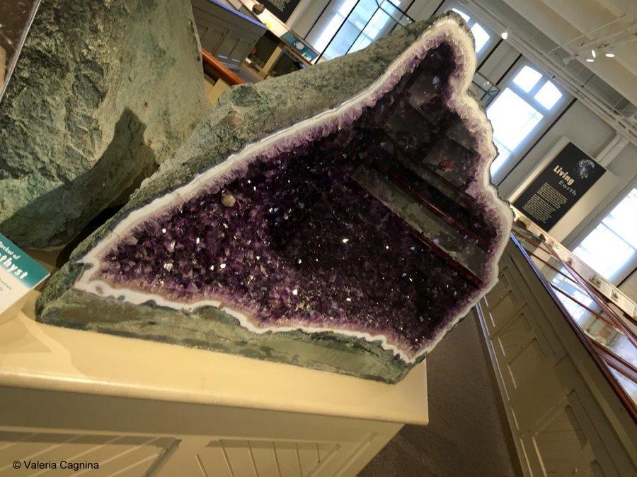 cosa vedere a Boston Harvard museo di storia naturale minerali