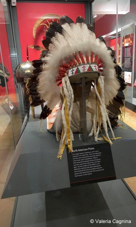 cosa vedere a Boston Harvard museo di storia naturale peabody museo