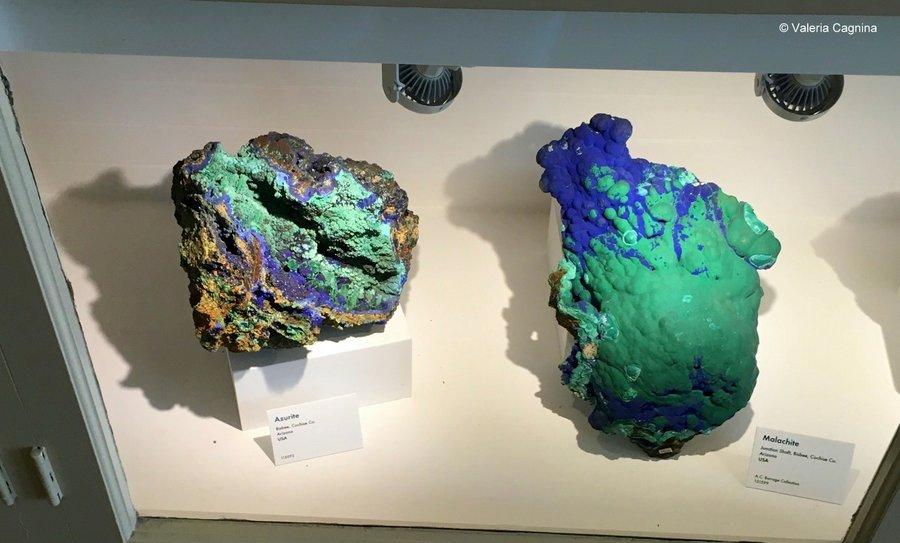 cosa vedere a Boston Harvard museo di storia naturale meteoriti