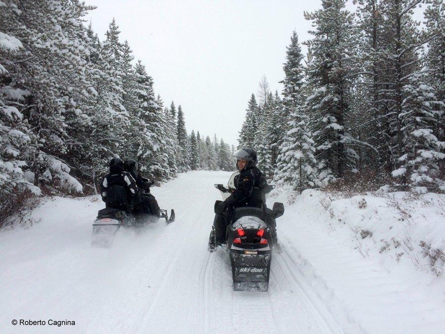 vacanze in motoslitta
